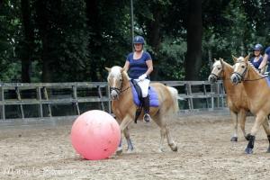 JOHORSE.nl sponsor paardenvoetbal