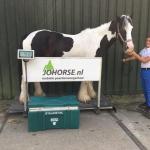 De mobiele paardenweegschaal weeg je paard