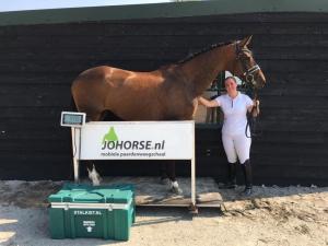 Clubdag bij Paardensportvereniging de Bommelerwaard
