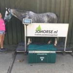 weet jij wat je paard weegt? nee. vraag de mobiele paardenweegschaal van johorse