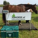 JOHORSE.nl ''mobiele paardenweegschaal''